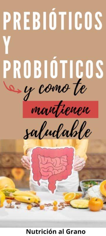 Pin sobre la diferencia entre prebioticos y probioticos