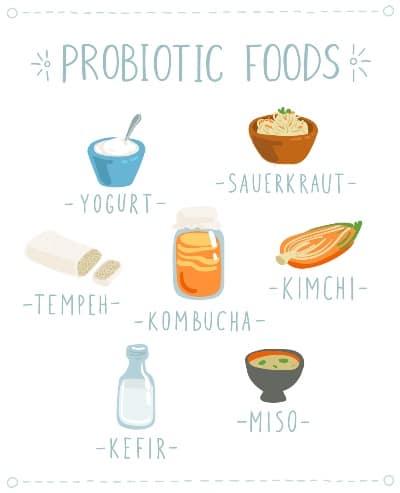 Que son alimentos probioticos