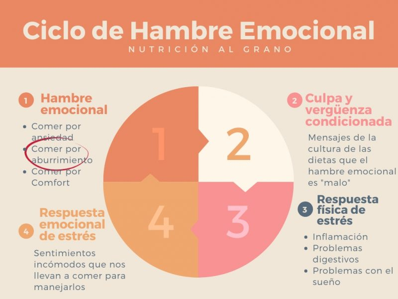 ciclo de hambre emocional